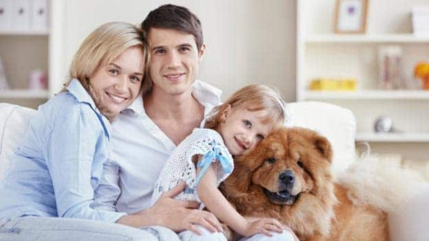 Wills & Trusts dog-young-family Direct Wills Flitwick